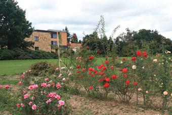 Zahradnictví rajhrad
